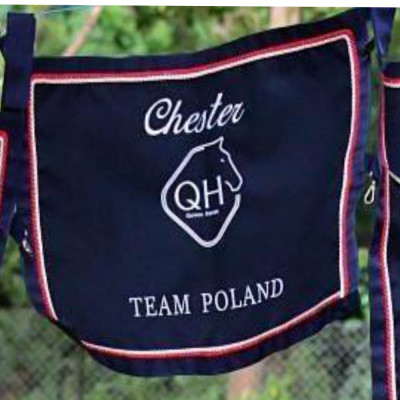 Bluza Queen Horse Zip z kapturem - Red